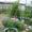 Дом с земельным участком в Торжокском районе Тверской области #893114
