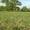 участок на берегу озера 12 км от Твери  #1218268