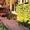 Сдаю частный дом в турбазе Чайка-Селигер,  в сосновом бору,  у озера!   #1228585