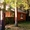 Сдаю дом в красивейшем месте Селигера -  в сосновом бору,у озера! - Изображение #1, Объявление #1228589