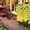 Сдаю дом в красивейшем месте Селигера -  в сосновом бору,у озера! - Изображение #2, Объявление #1228589