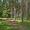 Сдаю дом в красивейшем месте Селигера -  в сосновом бору,у озера! - Изображение #10, Объявление #1228589