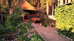 Сдаю частный дом в турбазе Чайка-Селигер, в сосновом бору, у озера!   - Изображение #1, Объявление #1228585