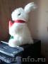 Продам зайца мягкую игрушку